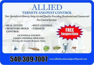 Allied Termite and Pest Control exterminator